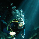 picture of diving the Gran Cenote, Cenote