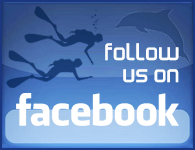 join Scuba Libre on facebook